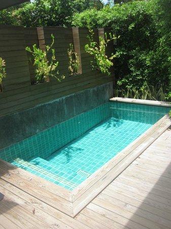 Tango Luxe Beach Villa : private pool in shupa villa
