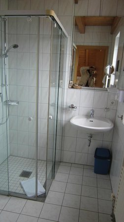 Berghotel Schiller: bagno