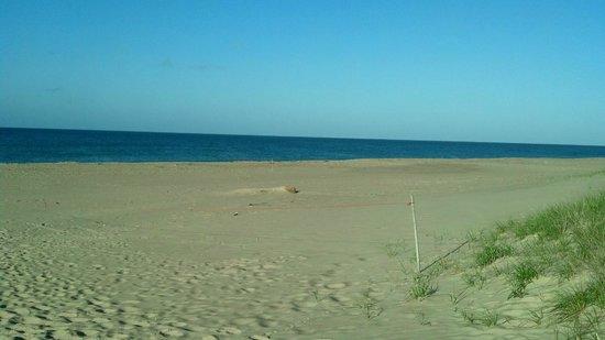 Winnetu Oceanside Resort: beach