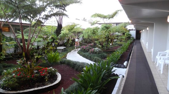 Hilo Seaside Hotel: Patio