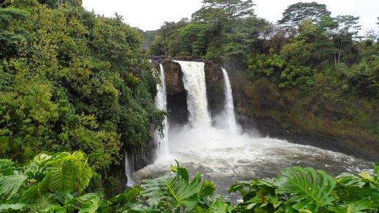 Hilo Seaside Hotel: Rainbow falls, hilo