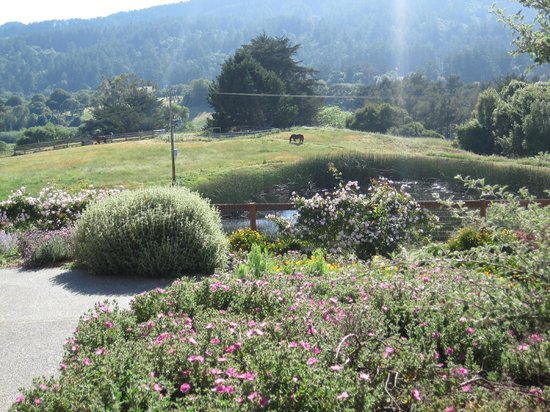 Roundstone Farm Bed and Breakfast Inn: View and gardens