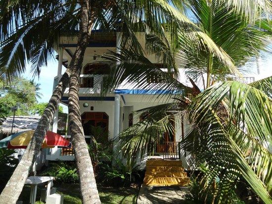 Hotel Frangipani Beach Villas : l'hotel