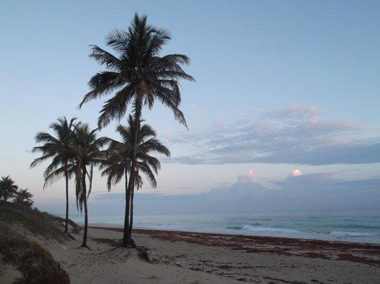 Playas de Este: Au petit matin du 29 avril 2012 à 7h06.