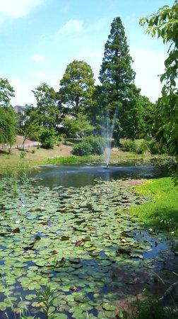 Keisei Rose Garden: 静かな池のほとり