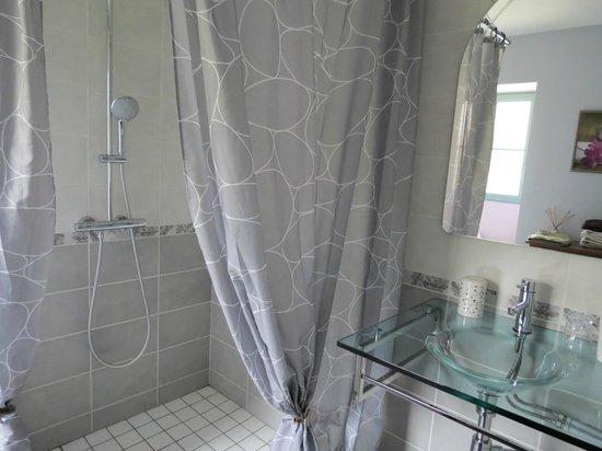 Chambres d'hotes de La Fontenille: douche