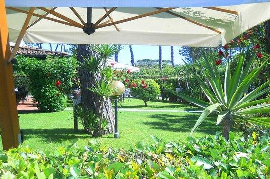 Il giardino dell 39 hotel eden hotel per bambini forte dei marmi picture of hotel eden - Il giardino forte dei marmi ...