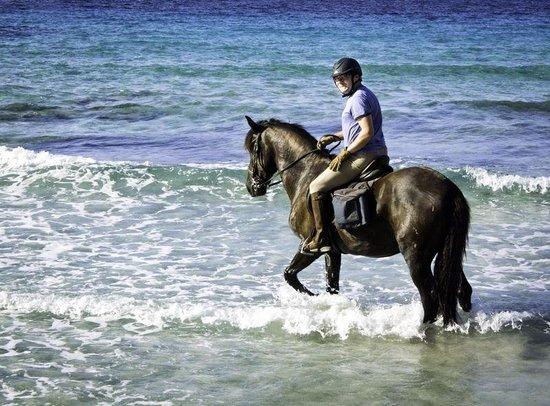 Cavalls Son Angel: Ruta de Cami de Cavalls