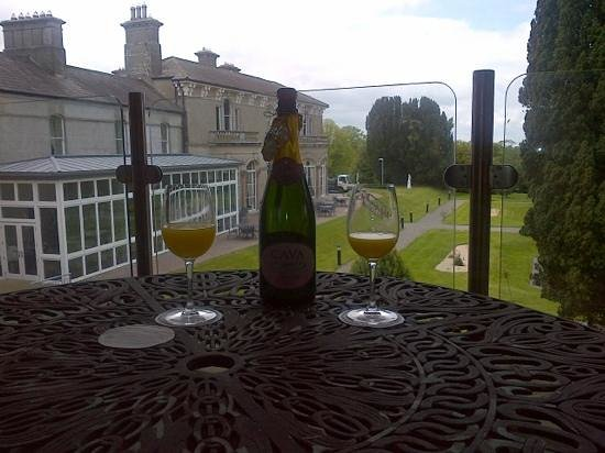 Lyrath Estate Hotel & Spa: our balcony