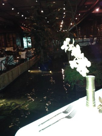 Blue Elephant : Table at the pond and waterfall