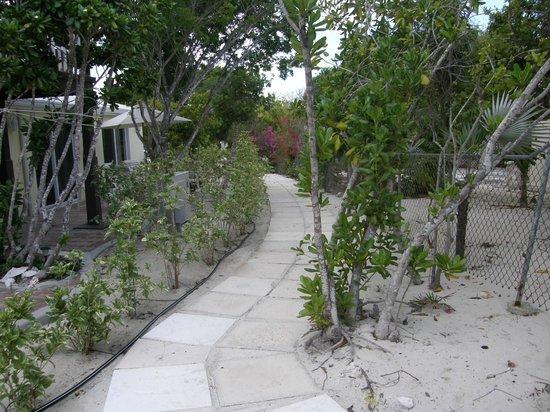 Atlantic Ocean Beach Villas: Walkway to paradise