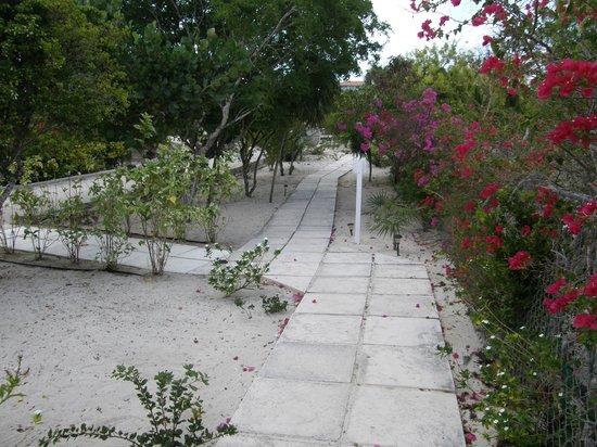 Atlantic Ocean Beach Villas: Walkway and grounds