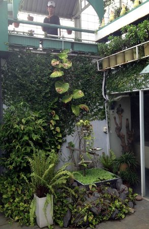 Minh Chau Hotel: A small corner of the roof-top garden with the dedicated gardener