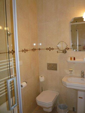 Royal Princess Hotel: Small bathroom off the main area