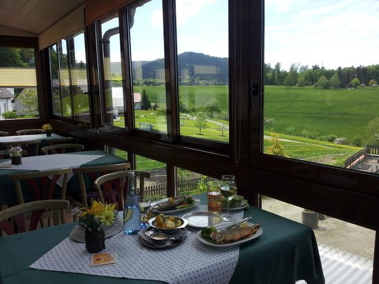 Bad Herrenalb, Germany: Panoramablick vom Waldcafe Schaible ins obere Gaistal