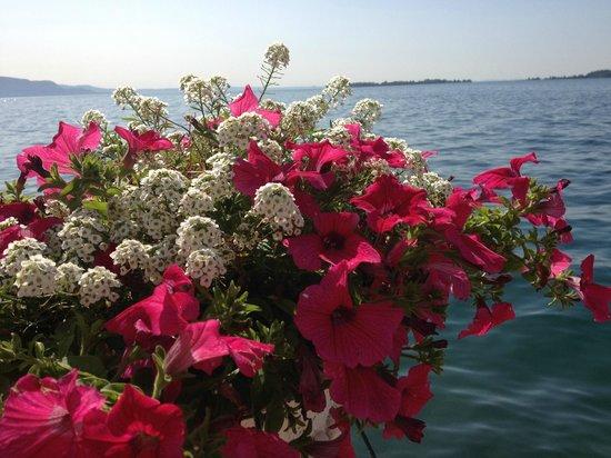 Grand Hotel Gardone : Blick auf den See ( hinter Blumen )