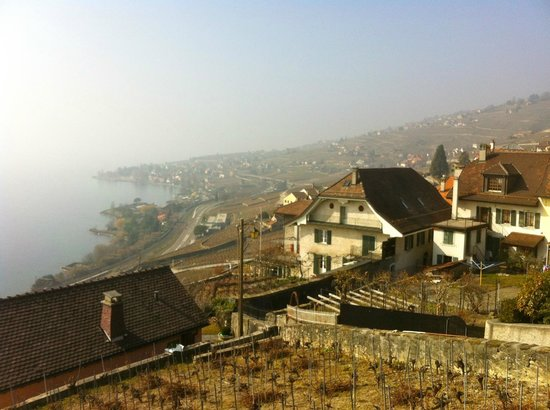 Villa Lavaux Boutique B&B: view from our room