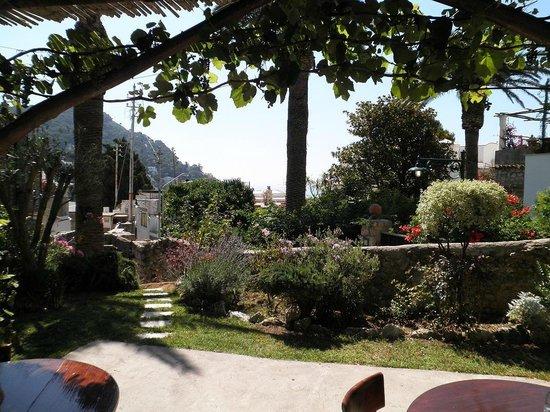 Villa Aida: giardino e colazione