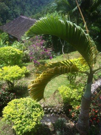 Manah Liang Bungalow: Gartenanlage