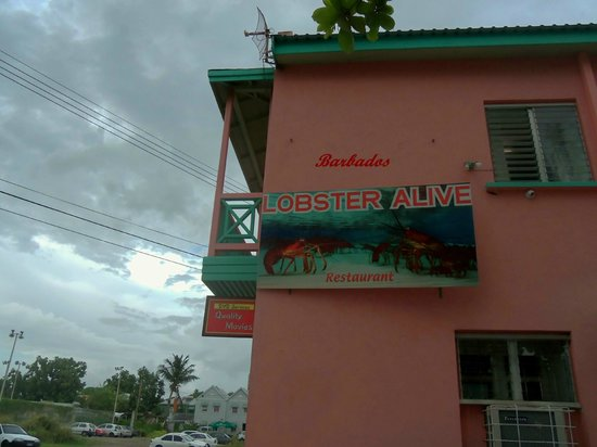 Lobster Alive: If your not driving towards this buiding to see the sign, you may miss it.