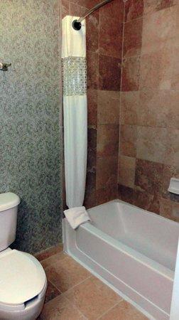Hampton Inn & Suites Savannah Historic District: Room 501