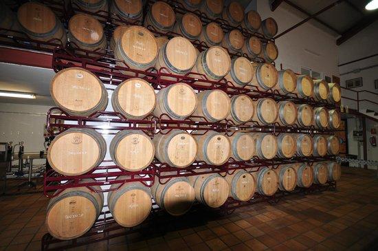 Bodegas Enrique Mendoza: Barrel racks