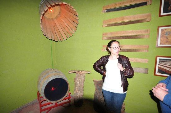 Bodegas Enrique Mendoza: Our Tour Guide Mayte