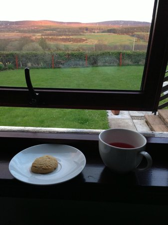 Leanach Farm: View from our room with a cup of tea and biscuit. Wonderful!