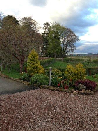 Leanach Farm: Front drive