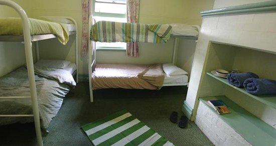 Coolibah Lodge Backpackers: Dorm Room