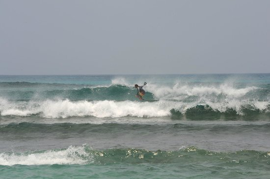 Long Caye Resort: Surfing
