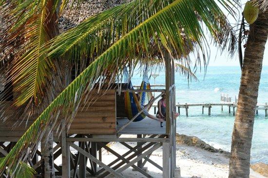 Long Caye Resort: Accommodations