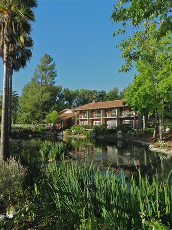 Westlake Village Inn: The pond seen from the gazebo