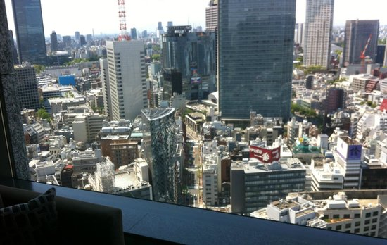 The Capitol Hotel Tokyu: 28th floor view