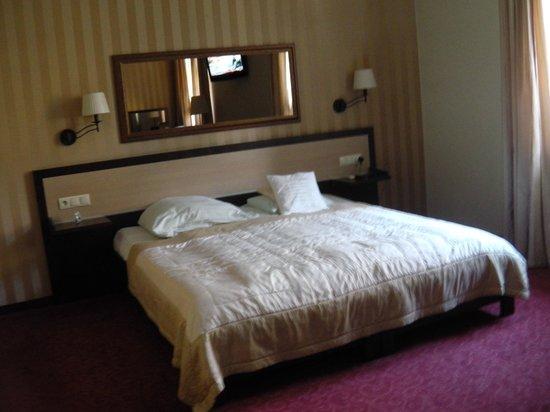 Amber Hotel : deluxe room