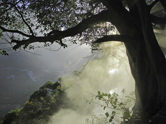 Tolantongo Caves : Dawn thermal pool