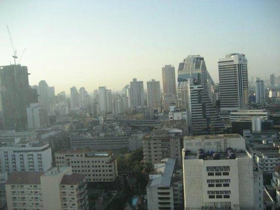 رويال بنجا هوتل: view