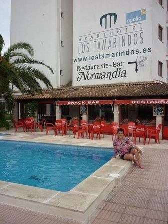 Apartamentos Ferrer Tamarindos : pileta