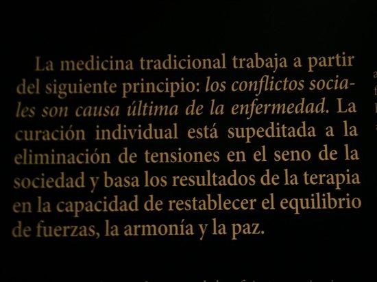 Fundación Alberto Jiménez-Arellano Alonso: Curiosa enseñanza