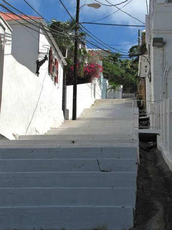 At Home In The Tropics Bed and Breakfast Inn : Looking up steps coming down from B & B entrance