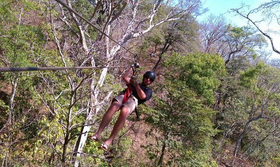 Da Flying Frog Canopy Tours : right through the trees with the beach out on the horizon - Beautiful!
