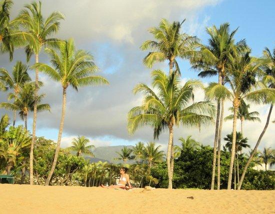 Ka'anapali Beach : Der Strand kurz vor Sonnenuntergang