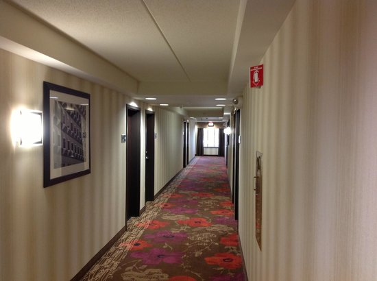 Hampton Inn and Suites Detroit/Airport-Romulus: Wide, modern, clean hallways.