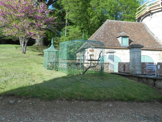 Chateau de Beaujeu: Partie des dépendance