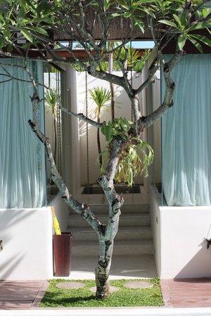 Kiss Bali: Outside
