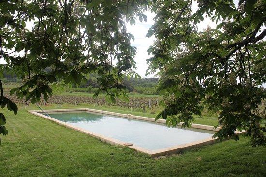 Le Mas Perreal : zicht op zwembad