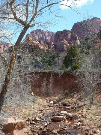 Kolob Canyons 사진