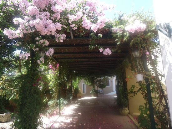Mediterranean Beach Resort Hotel: Inside hotel territory