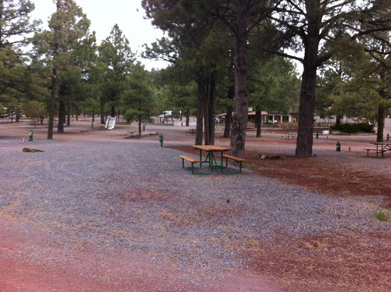 Williams / Circle Pines KOA Campground: Circle Pines KOA Campground