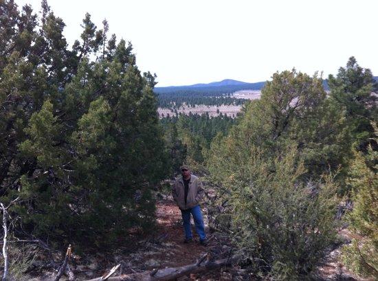 Williams / Circle Pines KOA Campground : Circle Pines KOA Campground trails